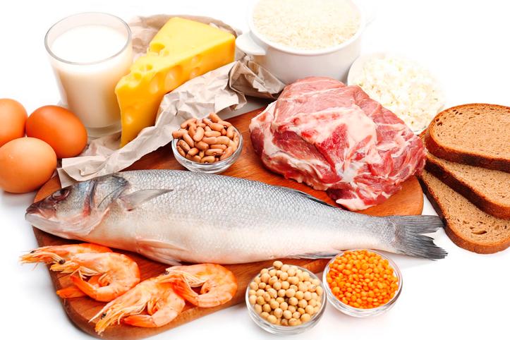 Resultado de imagem para alimentos protêicos