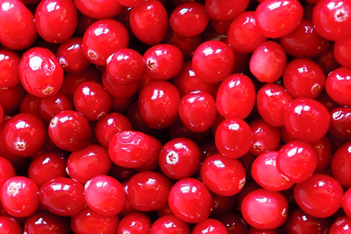Cranberry: a fruta poderosa
