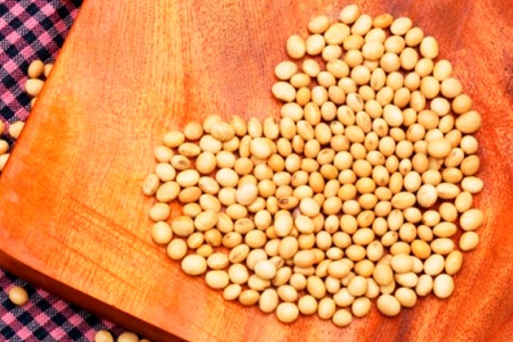 Conheça algumas curiosidades sobre a soja