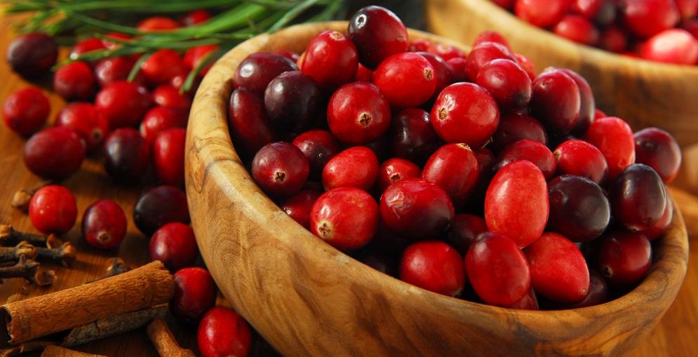 A pequenina (e poderosa) cranberry