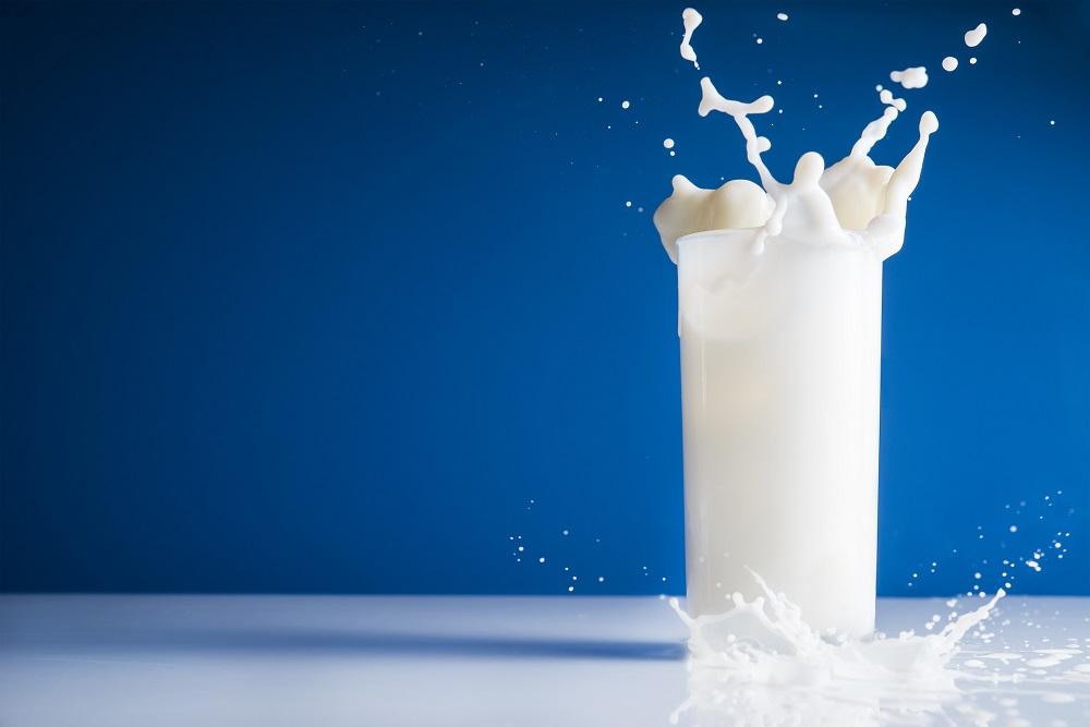 Qual o melhor leite para consumo?