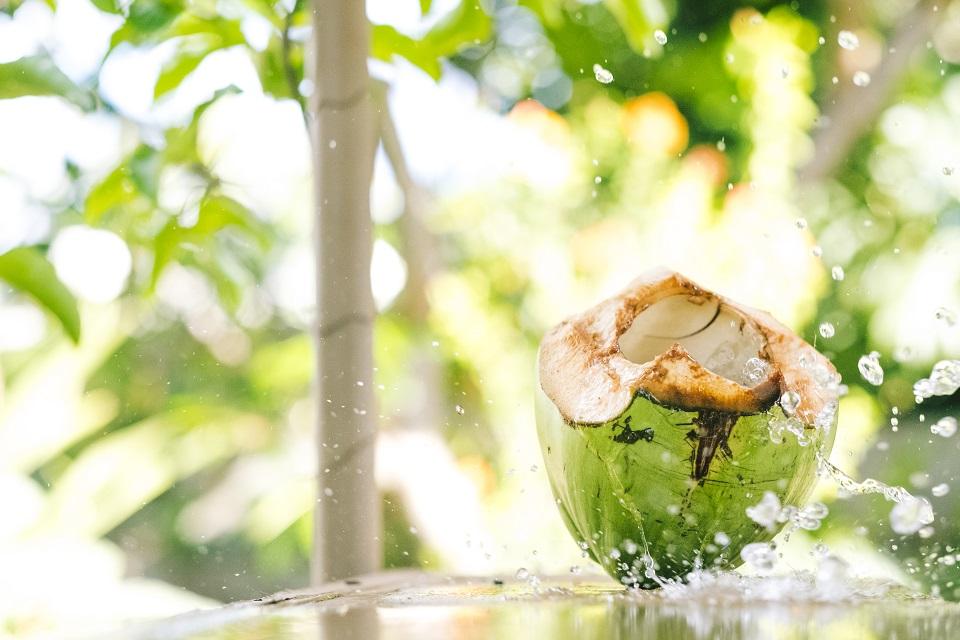 Del Valle leva aos mercados nova opção de água de coco em caixinha